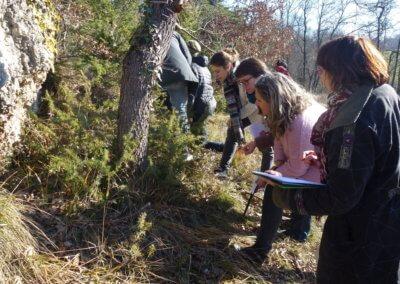 11) Observation botanique promo 3